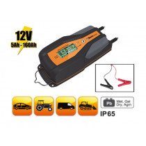BETA 1498/8A-BATTERY CHARGER 12V